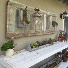 Old door repurposed. Chicken feeder planters with succulents