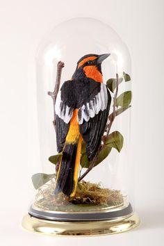 Vegan Taxidermy - crepe paper birds