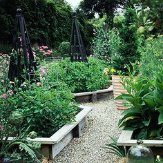 Stone pathway between raised beds - black garden trellis provides nice contrast and height.
