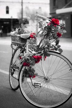 DIY: Valentine's Rose Garland Bike                              …