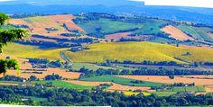 Italy, Marche, Recanati- countryside #1,hills  by Gianni Del Bufalo