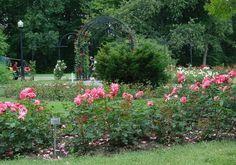 Best Gardens in New England