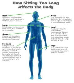 What sitting too long does to your body