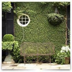 How to Plant a Creeping Fig to Cover a Building