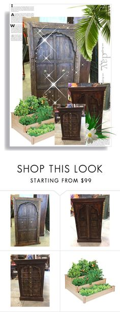 """""""Exotic Antique Doors, cabinate"""" by era-chandok ❤ liked on Polyvore featuring interior, interiors, interior design, home, home decor, interior decorating, sale, door, offer and antiquefurniture"""