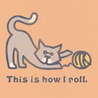 This Is How I Roll. #Lifeisgood #Optimism #Cats
