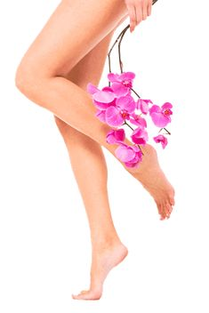 Want smooth, cellulite-free legs like this? Try our acoustic wave therapy! Its a non-invasive cellulite treatment, just in time for the spring :) Silky Smooth Legs, Smooth Skin, Waxing Legs, Anti Aging Night Cream, Aging Cream, Essential Oils For Hair, Home Remedies For Hair, Beauty Soap, Best Natural Skin Care
