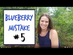 Growing Blueberries this year? It's easier than you think. Avoid these 4 beginner mistakes and you'll be on your way to a bountiful crop!