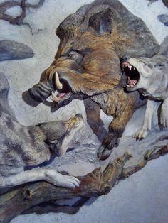 Hunting Art, Pig Hunting, Wildlife Paintings, Wildlife Art, Wood Sculpture, Wall Sculptures, Hunting Drawings, Zoo Art, Big Animals