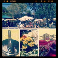 A day at Malibu Wines