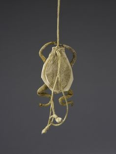 Creation Date:  seventeenth century? Materials:  Dimensions:  10.0 x 6.0 cm RCIN  37043 Description:  A gold thread and yellow taffeta purse in the shape of a frog with a cord drawstring.