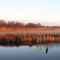 Cold morning walk!  #nature #walking #giethoorn #weerribben