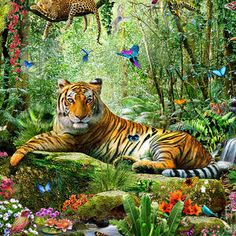 Tiger In The Jungle by MGL Meiklejohn Graphics Licensing Jungle Pictures, Nature Pictures, Tiger Wallpaper, Animal Wallpaper, Animal Sketches, Animal Drawings, Jungle Drawing, Deer Species, Paradise Pictures