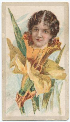 Beauties - Flower Girls ~ British American Tobacco Co. British American Tobacco, New York Public Library, Vintage Ephemera, Woman Painting, Daffodils, Vintage Advertisements, Victorian, Flower Children, Flower Girls