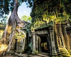 Ta Prohm, Cambodia - Was in the movie Tomb Raider. Absolutely stunning!