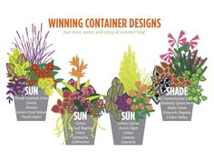 Idea Of Making Plant Pots At Home // Flower Pots From Cement Marbles // Home Decoration Ideas – Top Soop Container Design, Minneapolis, Fountain Grass, Pot Jardin, Container Flowers, Succulent Containers, Full Sun Container Plants, Fall Containers, Outdoor Plants