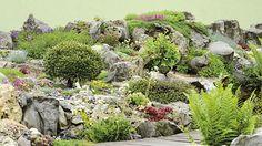 Rok od roku krásnější. Pečlivý výběr kvetoucích i nekvetoucích druhů vytváří pohlednou tapiserii, která zahradu oživuje od jara do zimy.