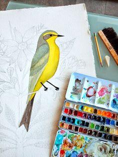 """Geninne D. Zlatkis  , yo la he bautizado como """"hada de los pájaros"""", pintaunas acuarelas increíblemente bonitas y  carva sellos pre..."""