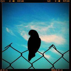 photo credit: Arianna Malagoli  www.hometta.it