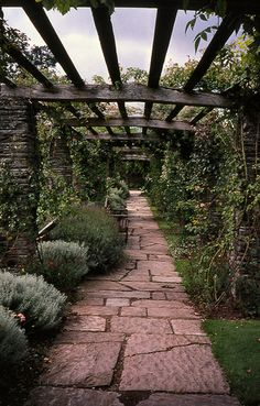 Hestercombe Pergola - Hestercombe House, Cheddon Fitzpaine, TAUNTON, Somerset TA2 8LG, United Kingdom (Gardens by Edwin Lutyens and Gertrude Jekyll : 1904 - 1908)