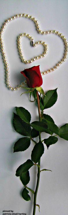 valentine.quenalbertini: Pearls, Roses, Hearts