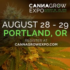 Join us in Portland, Oregon this August 28 - 29, 2015 for the ‪#‎CannaGrowExpo‬ Attendee registration is happening now and session passes are limited so get yours today! Rooms at the Red Lion Jantzen Beach are going fast and all include private balconies / You can book yours at CannaGrowExpo.com/BookHotel/ CannaGrowExpo.com to register. 18+ to enter, open to all.