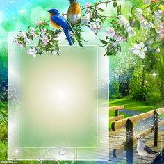 Create your own photo montage on Pixiz. Photo Background Images, Frame Background, Background For Photography, Photo Backgrounds, Boarder Designs, Frame Border Design, Photo Frame Design, Rose Frame, Flower Frame