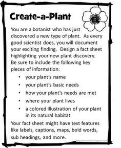 Create a Plant or Create an Animal - this could be a great sub plan
