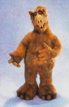 I always used to laugh when you saw all of alf from the back in the intro of the show because they rarely showed his whole body