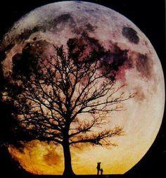 Read Lua 🌜 from the story Fotos Para Tela Do Seu Celular/ABERTO by Sexytaekookv (CORNINHA) with reads. Stars Night, Stars And Moon, Big Moon, Full Moon, Moon Moon, Moon Art, Moon Pictures, Pretty Pictures, Moon Pics