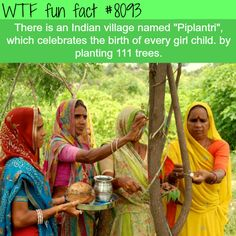 Indian village celebrates the birth of girls by planting trees - WTF facts