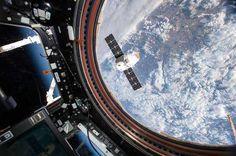 スペースXのドラゴン補給船、実験マウスと共にISSから地球に帰還   sorae.jp : 宇宙(そら)へのポータルサイト