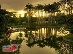 Parque del Este #Venezuela
