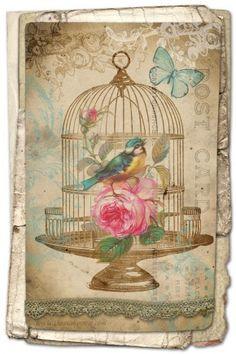 Free digital download vintage valentine card with bird cage