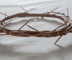 How to Make a Crown of Thorns