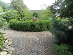 The curving pathway leading to the retail nursery at Northwind.