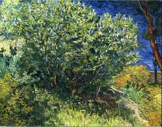 The passion of van Gogh shown in the painting The Lilac Bush.