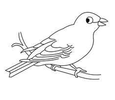Hungry Canary Bird Coloring Pages Best Place To Color - Coloring Page Ideas Bird Coloring Pages, Coloring Pages For Kids, Coloring Sheets, Canary Birds, Online Coloring, To Color, Drawing Tips, Folk, Drawings
