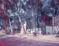 Eames Home, 1950