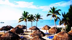 Ocean Maya Royale Adults Only 5 Mexico hotel