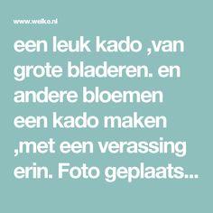 een leuk kado ,van grote bladeren. en andere bloemen een kado maken ,met een verassing erin. Foto geplaatst door annelies51 op Welke.nl