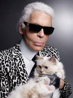 Cheap Fashion Women S Clothing Mode Origami, Fendi, Celebrities With Cats, Men With Cats, Steiff Teddy Bear, Teddy Bears, Devil Wears Prada, Womens Purses, Mode Style