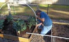 How to Build a Hoop House - http://modernfarmer.com/2015/01/build-hoop-house/?utm_source=PN&utm_medium=Pinterest&utm_campaign=SNAP%2Bfrom%2BModern+Farmer