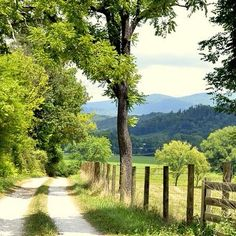 A sunny day in the Blue Ridge Mountains in north #Georgia.