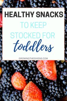 Make Mom Life easy! Keep these healthy snacks for toddlers stocked in your kitchen so you are always ready with a nutritious snack while on the go. // Growing The Givens Healthy Toddler Snacks, Healthy Kids, Healthy Eating, Healthy Food, Easy Healthy Dinners, Healthy Recipes, Quick Recipes, Keto Recipes, Cooking With Kids Easy
