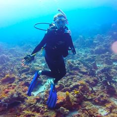7 Scuba Diving Myths busted