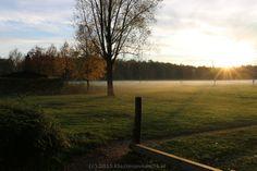 Opkomende mist zorgt voor leuke plaatjes