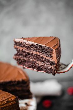 Absolutely incredible, healthy, paleo chocolate cake made with almond flour and coconut flour and topped with a whipped paleo chocolate frosting. Once you make this, you'll never need another chocolate cake recipe again.