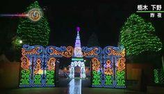 Tóquio: Começa iluminação de Natal no Grimm Forest Park. O parque temático, ao norte de Tóquio, que celebra os contos de fadas de Grimm, foi iluminado...