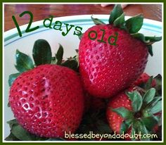 EASY Tip! Check out how to preserve your strawberries!
